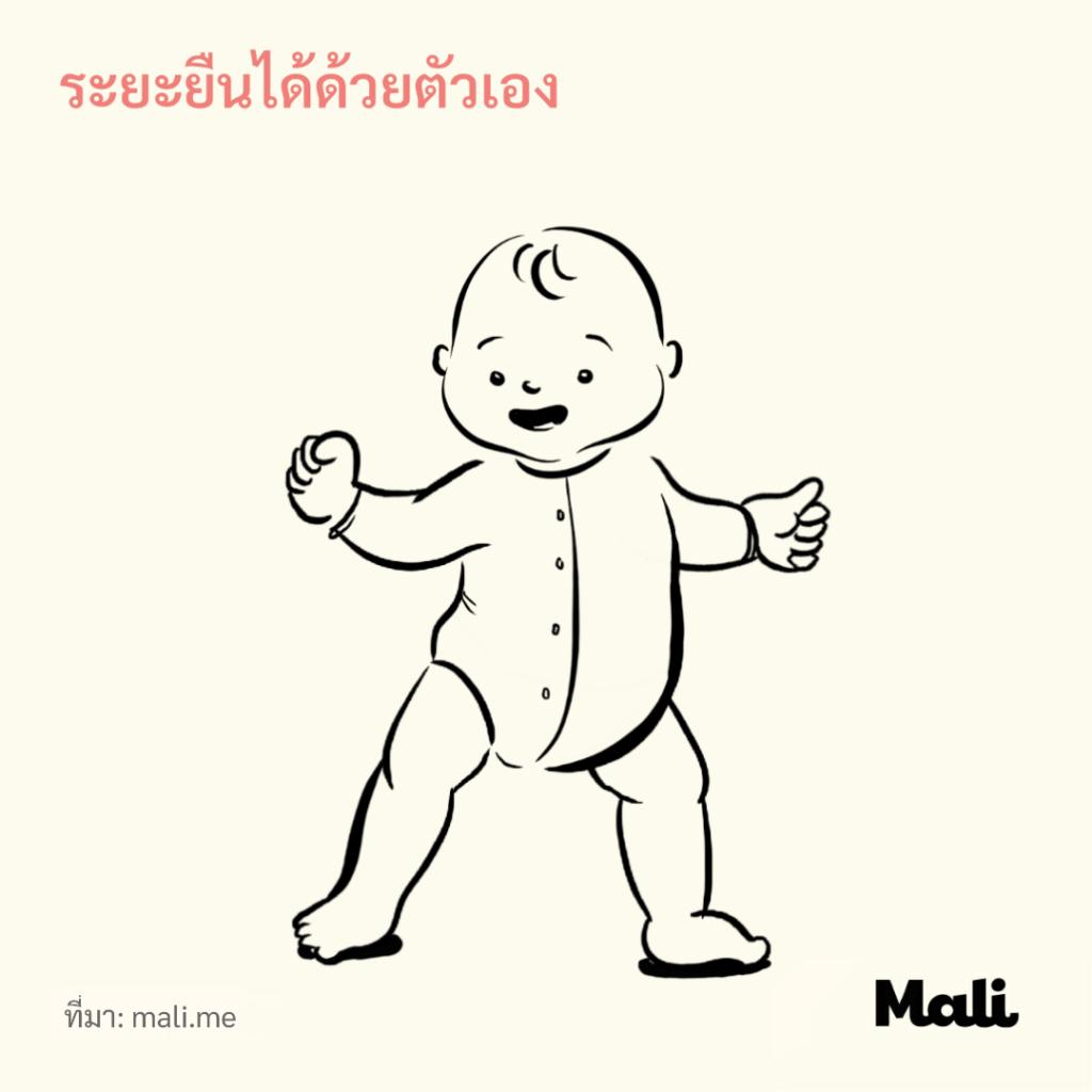 8 ขั้นตอนการเดินของทารก_ระยะยืนได้ด้วยตัวเอง by Mali