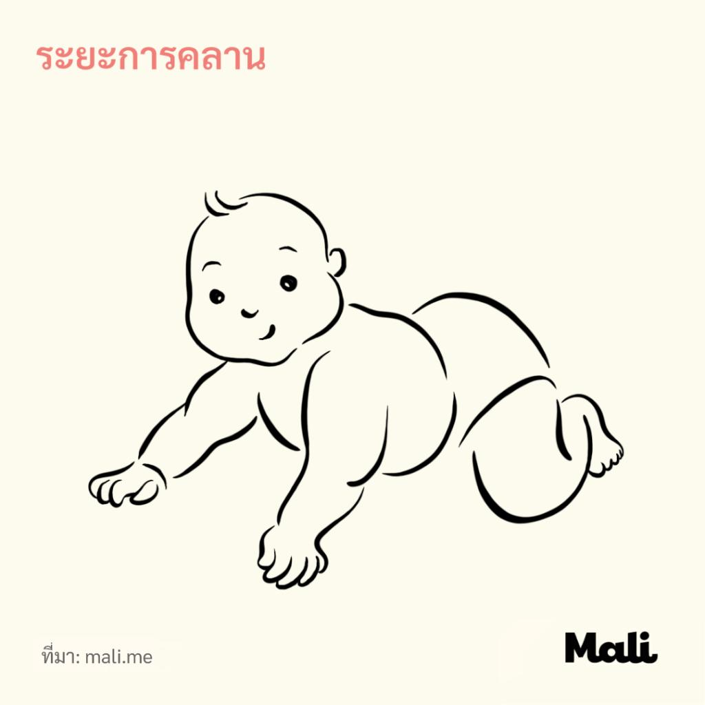 8 ขั้นตอนการเดินของทารก_ระยะเกาะคลาน by Mali