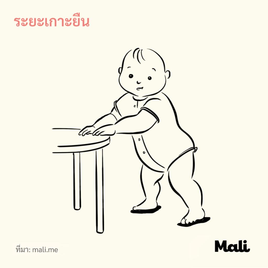 8 ขั้นตอนการเดินของทารก_ระยะเกาะยืน by Mali