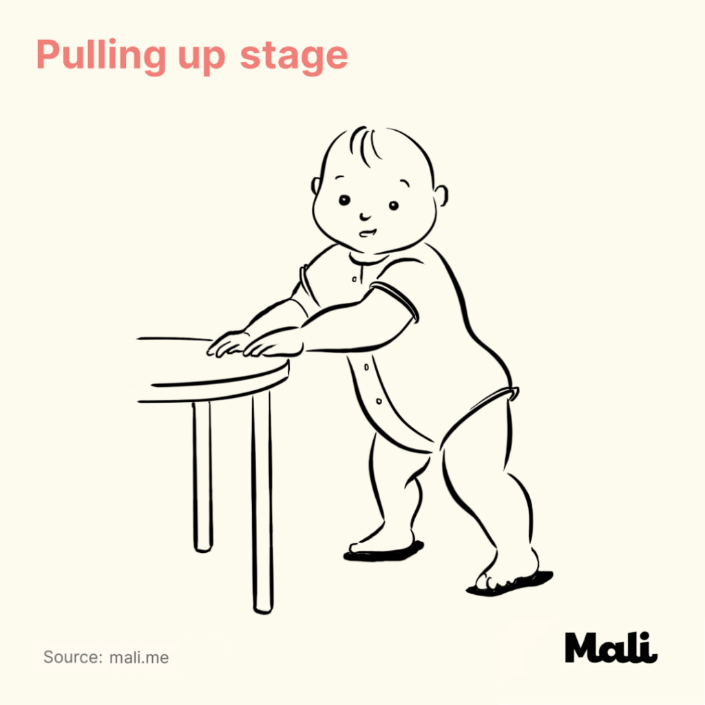 8 stages of baby walking_Pulling up stage by Mali