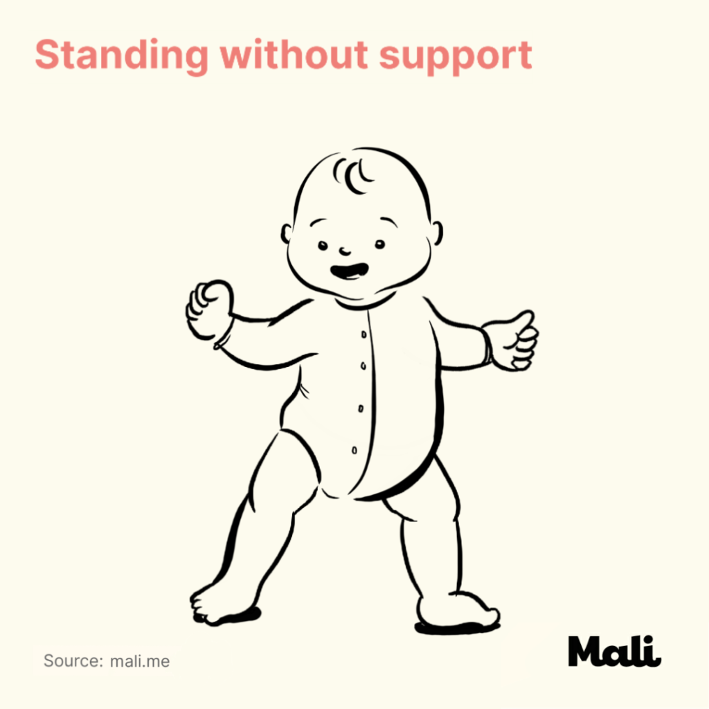 8 stages of baby walking_Standing without support by Mali