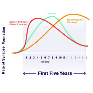 The first 3 years most critical learning period Eng