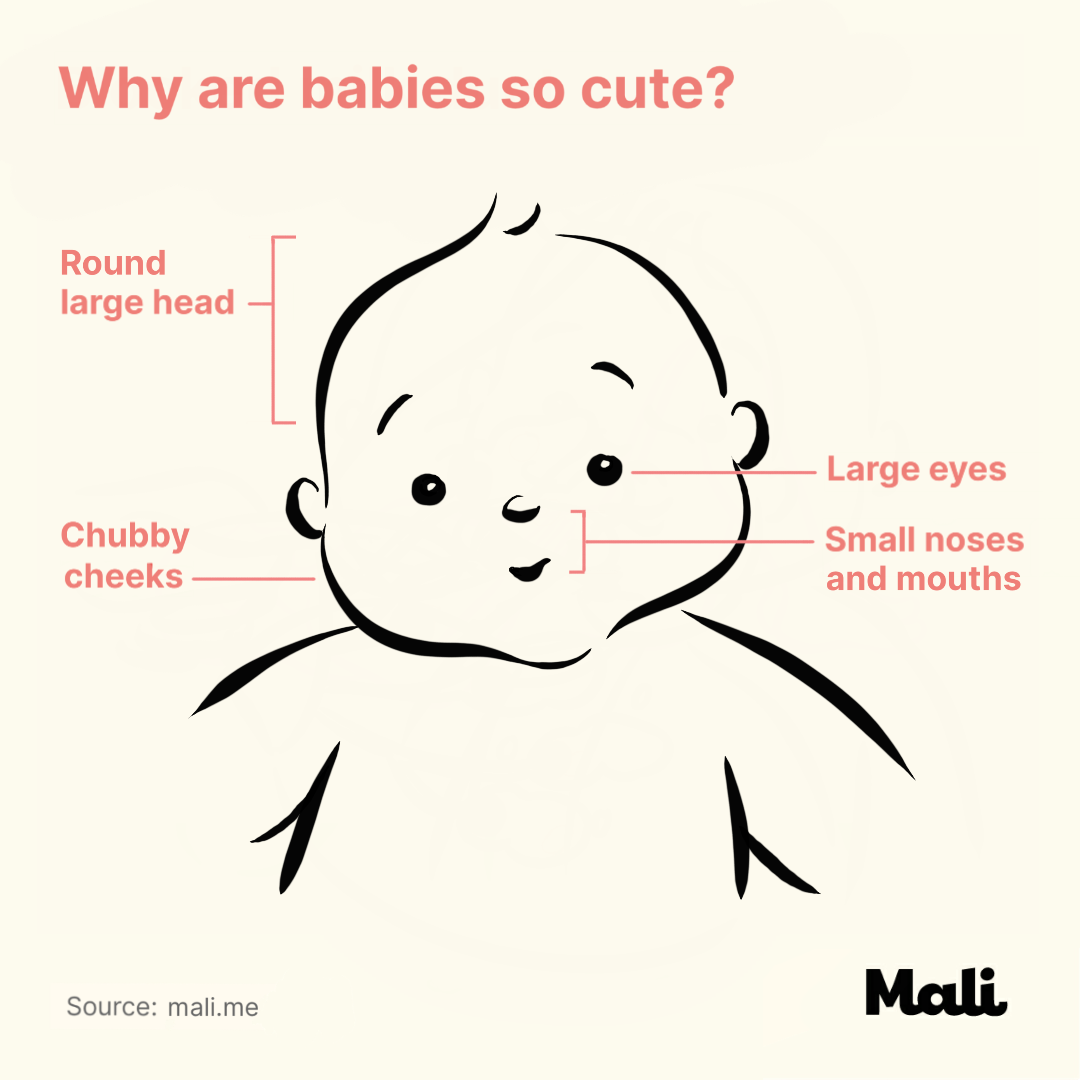 Why are babies so cute? by Mali