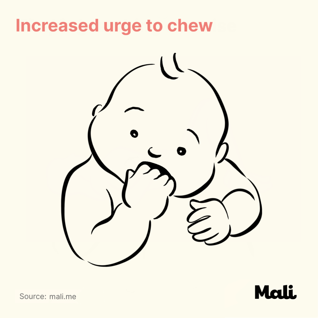 increased urge to chew_6 ways to determine whether your baby is sick or teething? by Mali