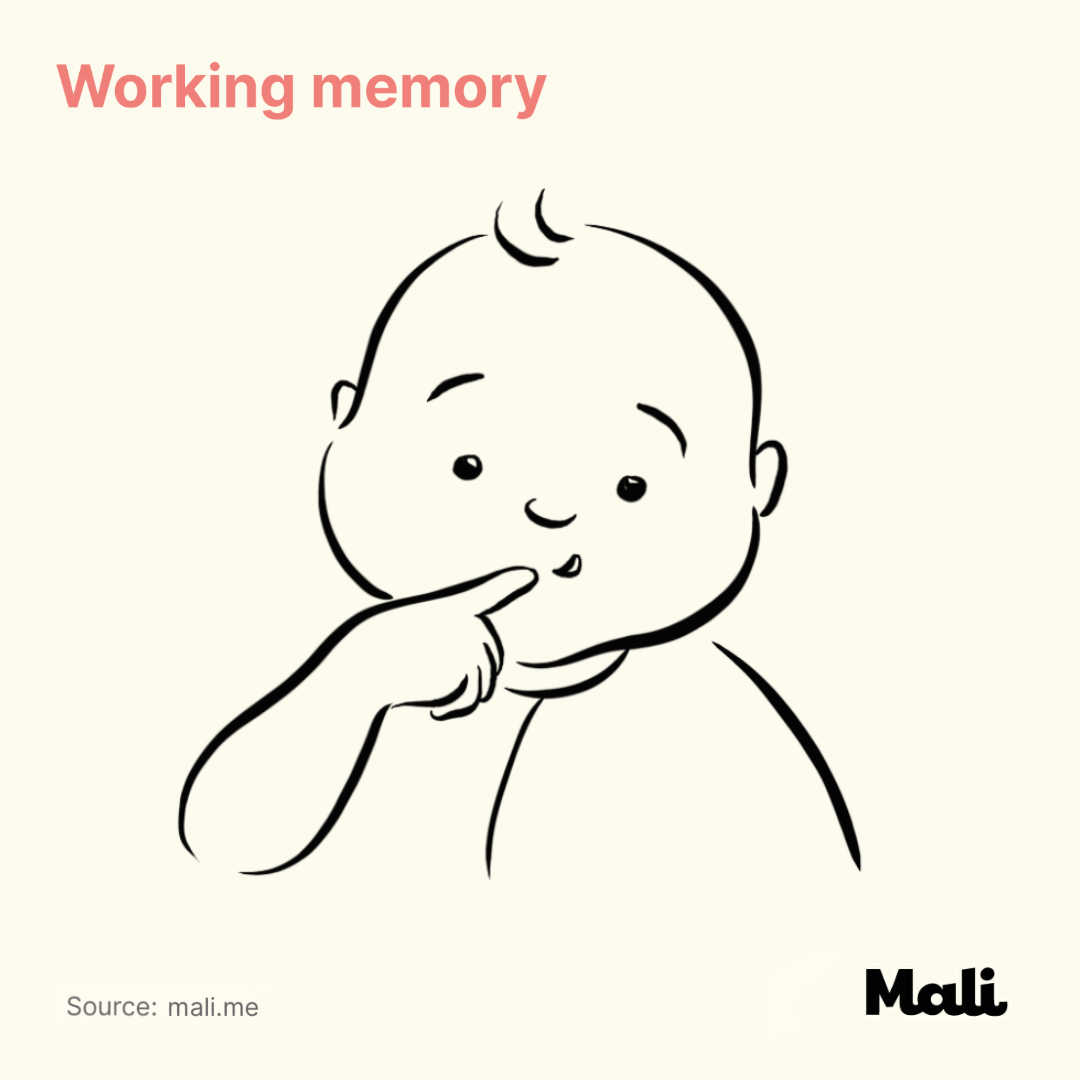 Working memory_The benefits of peek-a-boo and hide and seek by Mali