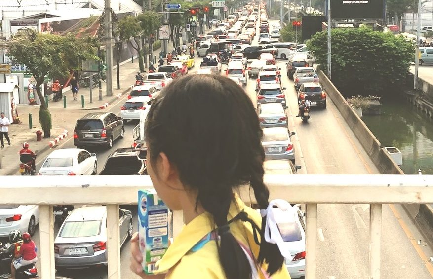 The effects of air pollution on young children
