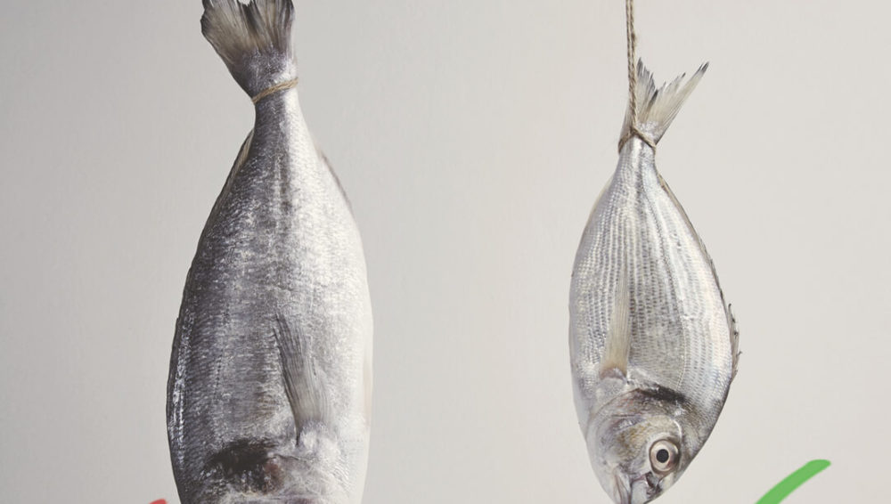 How mercury from  fish can get into your breast milk