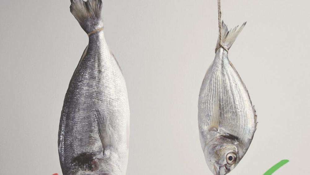 สารปรอทในเนื้อปลาสามารถส่งผ่านน้ำนมแม่ไปยังลูกน้อยได้