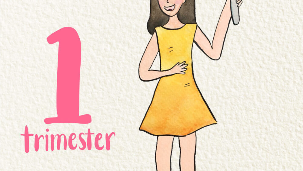Welcome to the first trimester!
